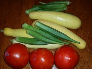 Garden Vegetable (tomatoes, squash, okra)