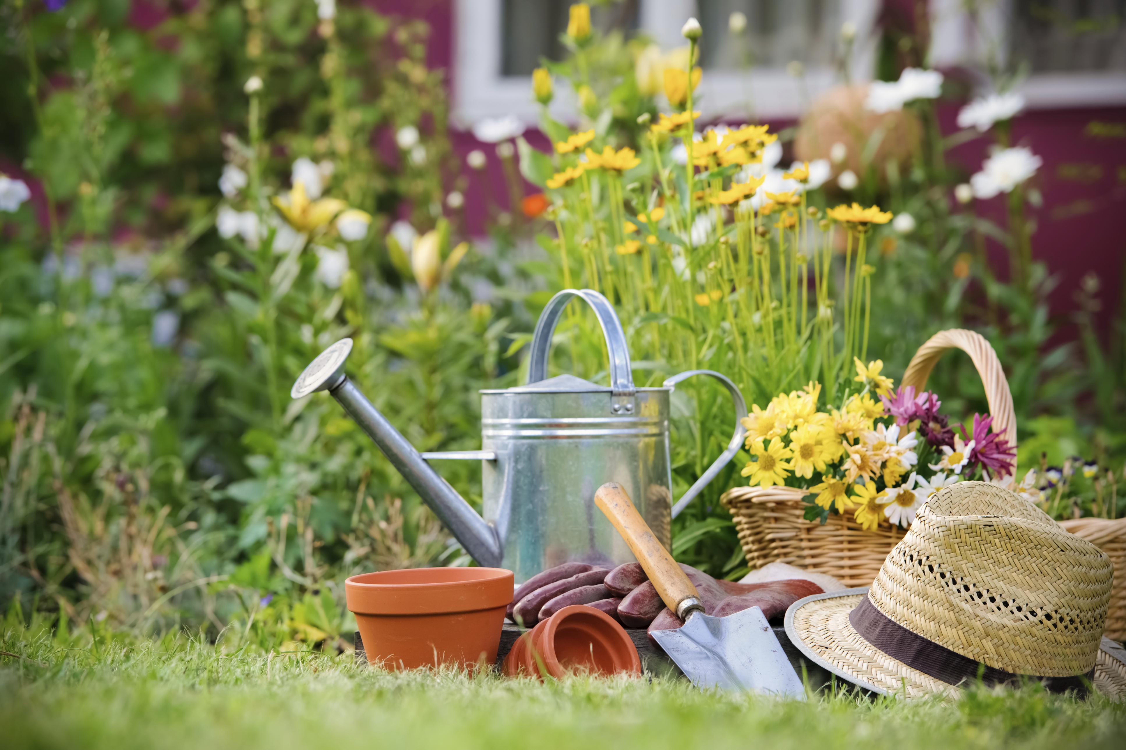 master gardener interest classes scheduled north carolina