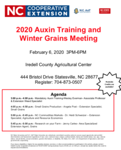 Image of Flyer for Auxin Training 2020